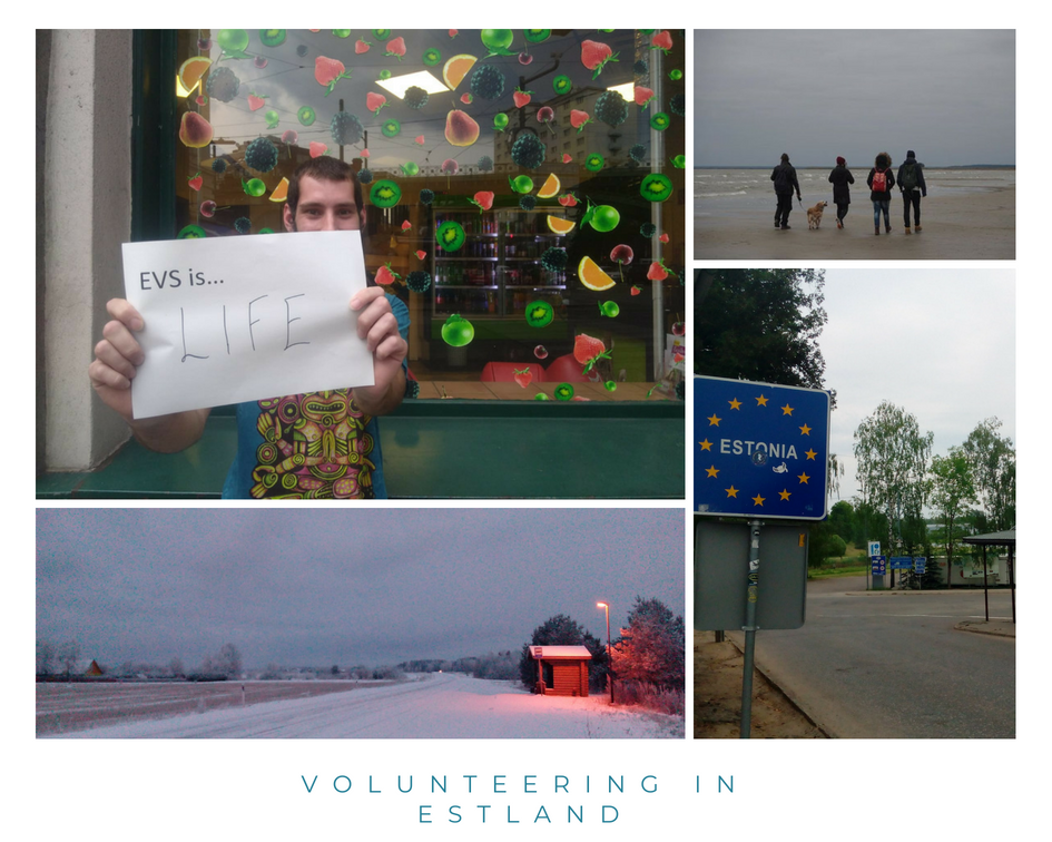 volunteering in estland